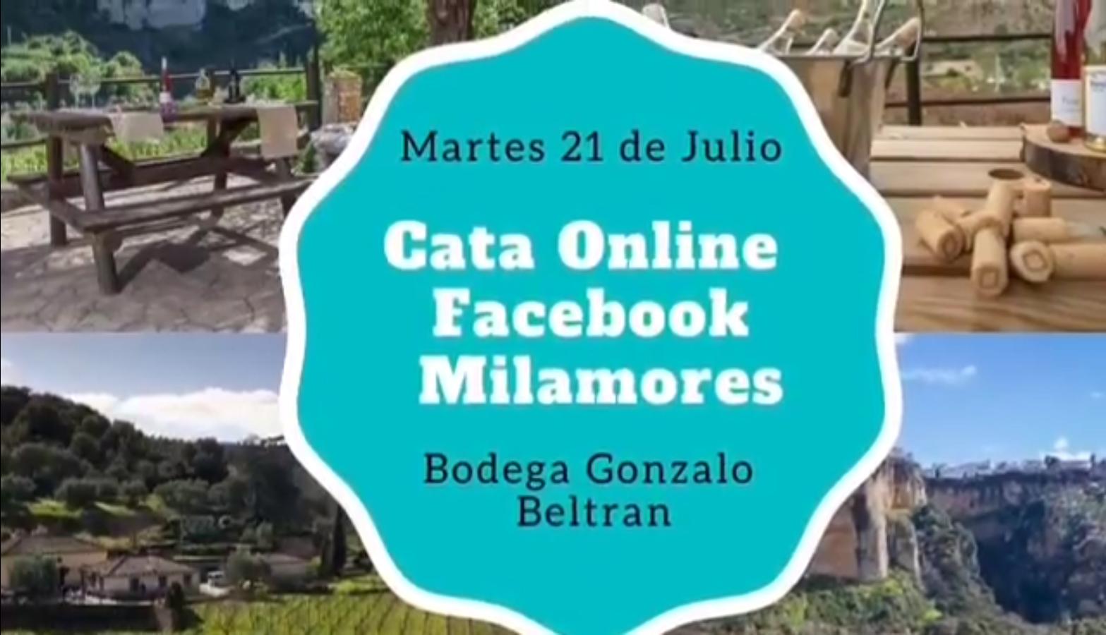 Cata de Vinos ON LINE Bodega Gonzalo Beltrán